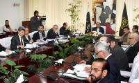 Dr Hafeez Shaikh chairs ECC meeting