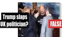 Fact-check: Is this a video of Trump slapping a UK politician?