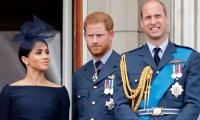 Meghan Markle was the one to cause a rift between Prince Harry and Prince William: report