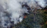 Hundreds of new fires in Brazil as outrage over Amazon grows
