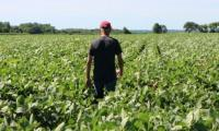 Trump claims a victory in China trade war, but US farmers want details