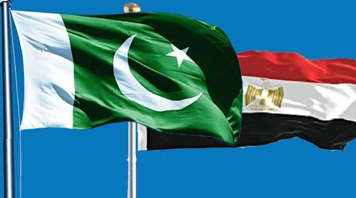 MoU signed to set up Pakistan Egypt Joint Working Group on Trade