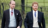 Prince Harry admits to having 'tensions' with brother Prince William