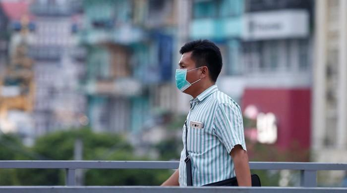 Indonesia suspects outbreak of African swine fever