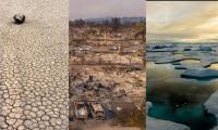 Climate change ´tipping points´ too close for comfort