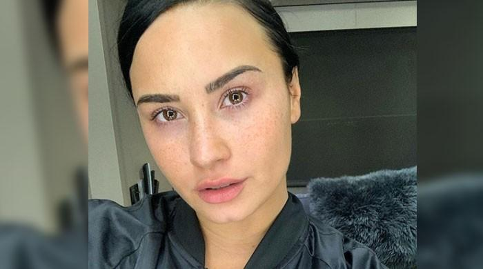Demi Lovatos stunning no-makeup selfie garners 1.3 million likes in two hours: Check it out - The News International