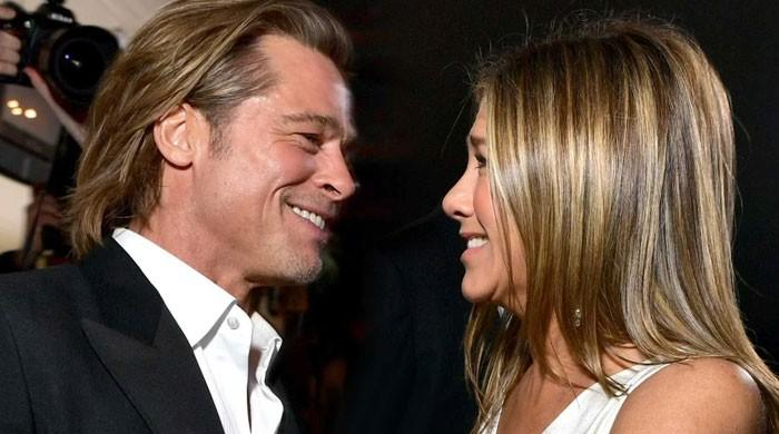 Jennifer Aniston, Brad Pitt are a good match, rekindling affair - The News International
