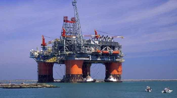 After collapse, oil prices record modest recovery