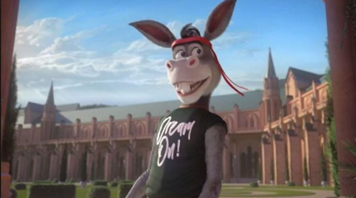 The Donkey King breaks all records - This time on TV!
