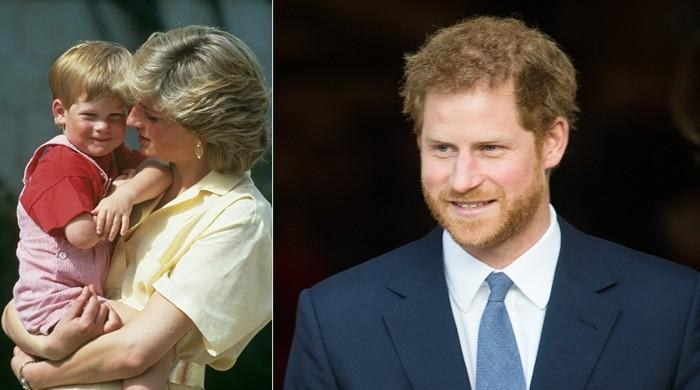 Prince Harry keeping the spirit of Lady Diana alive though charity - The News International