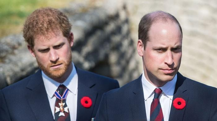 Prince Harry, Meghan Markle's wasteful spending caused a rift with Prince William