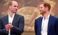 Prince Harry and Prince William split future proceeds of Diana memorial fund