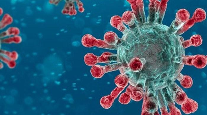Recovering coronavirus patients may lose immunity to reinfection within months