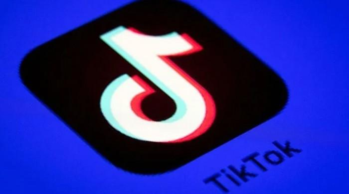 TikTok owner says team working day and night for 'best outcome': report