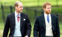 Prince William and Prince Harry's rift could damage the monarchy: report