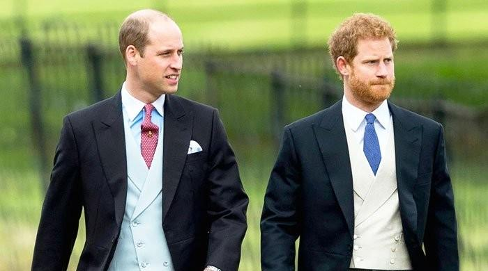 Prince Harry and William's fall-out happened over money-related issues