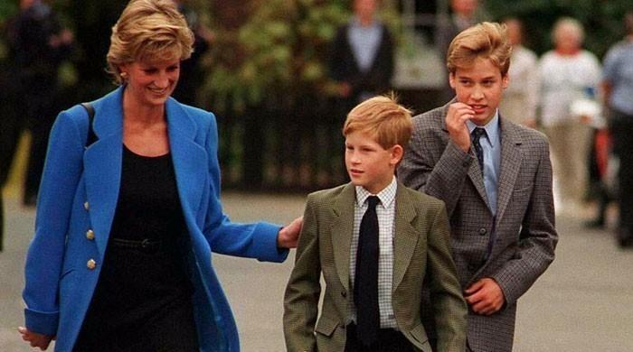 How Princess Diana broke the news of her divorce with Charles to Prince William - The News International