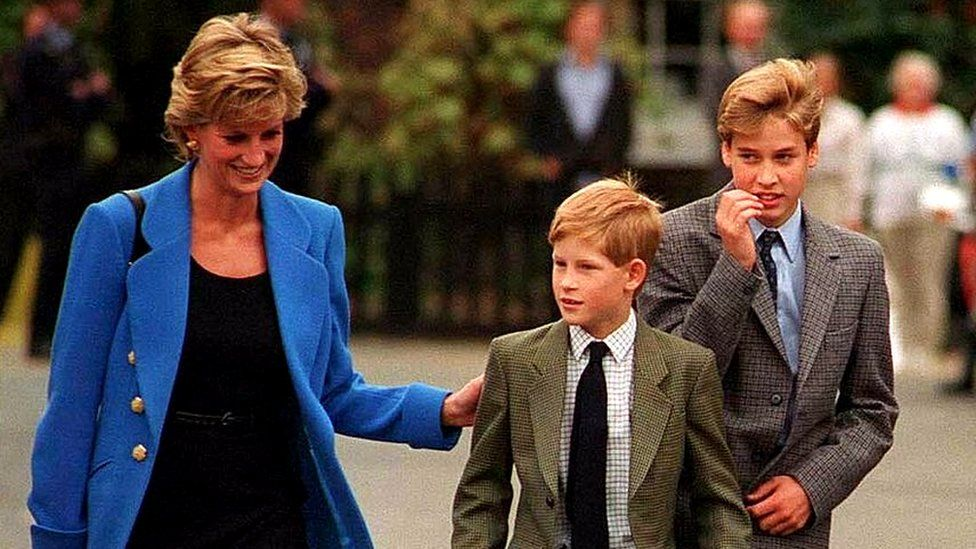 William and Harry plan Princess Diana statue