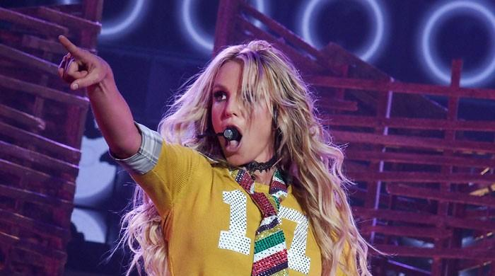 Britney Spears might never perform on stage again, court documents suggest