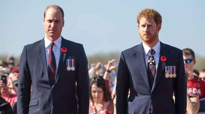 Prince William and Prince Harry are mending their fences, says royal expert - The News International