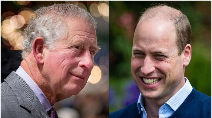 Prince Charles, William not cut out to be kings: 'Public should decide who replaces Queen - The News International