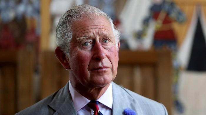 Prince Charles looking to remove several members from the royal family - The News International