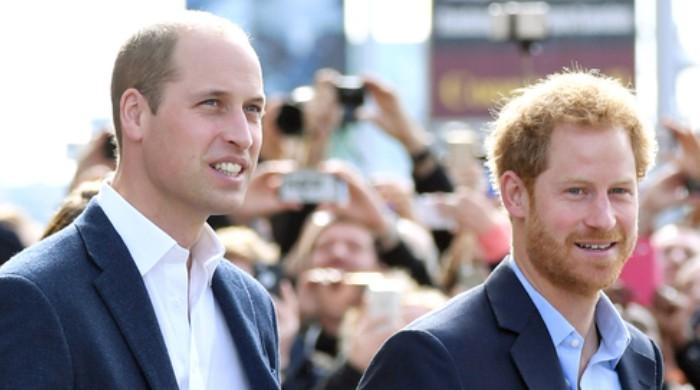 Prince Williams touching letter to Prince Harry during their time apart - The News International