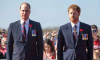 Prince Harry and Prince William: Row over a royal position to widen the rift between brothers