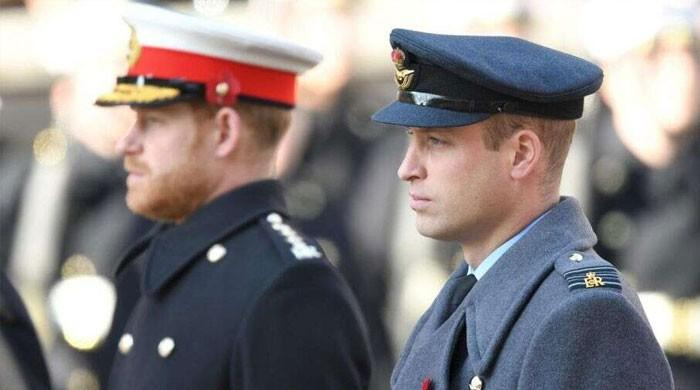 Prince William envious of Prince Harry's 'lovable rouge' reputation