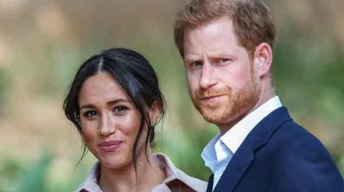 Did Meghan Markle plagiarise a quote from Netflix documentary?