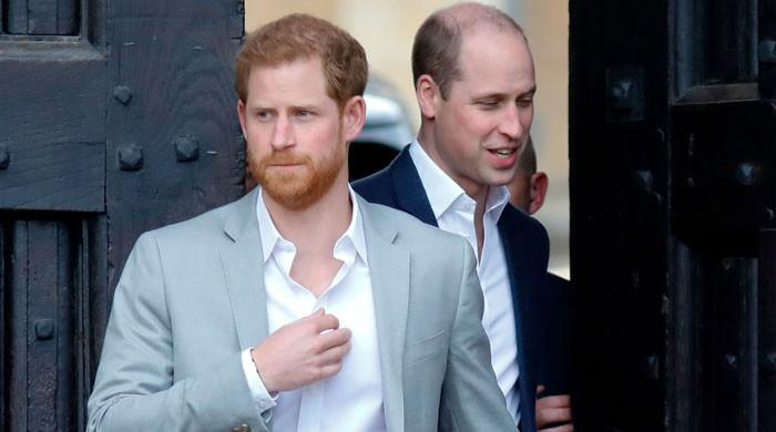 Prince Harry treated more 'harshly' compared to Prince William due to 'royal system'