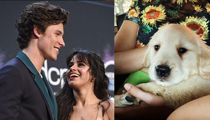 Shawn Mendes & Camila Cabello Reach Adorable Relationship Milestone