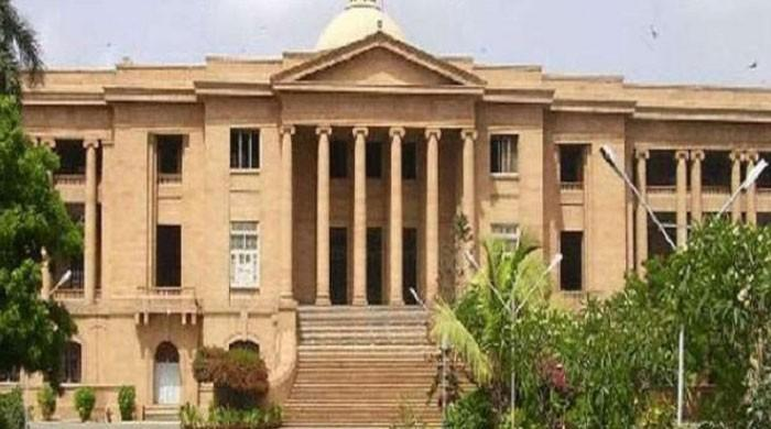 Arzoo Raja case: SHC directs formation of medical board to ...