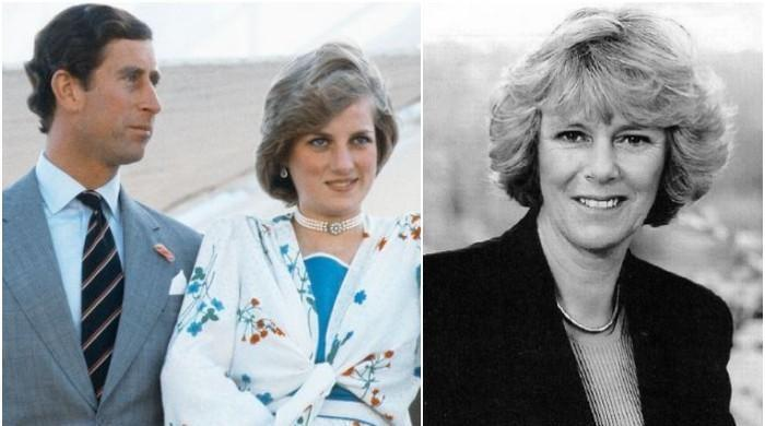 Princess Diana had no choice but to 'accept' Camilla as Charles's 'one true love'