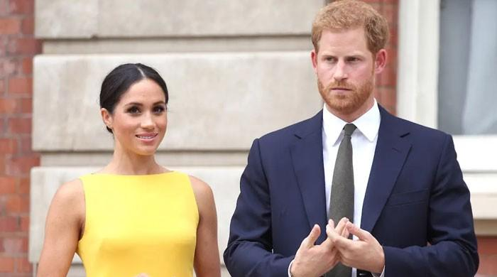 Meghan Markle, Prince Harry might 'decry the royal family' with Netflix deal: report
