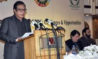 CPEC reshaping geo-economic landscape of entire region: Shibli