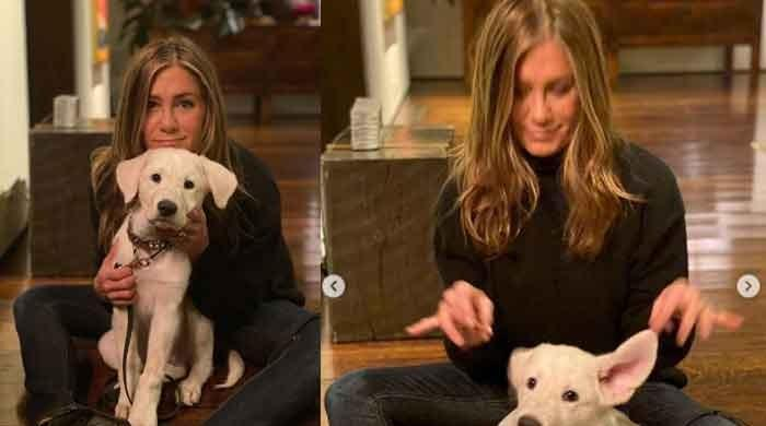 Jennifer Aniston hits 35 million followers on Instagram - The News International