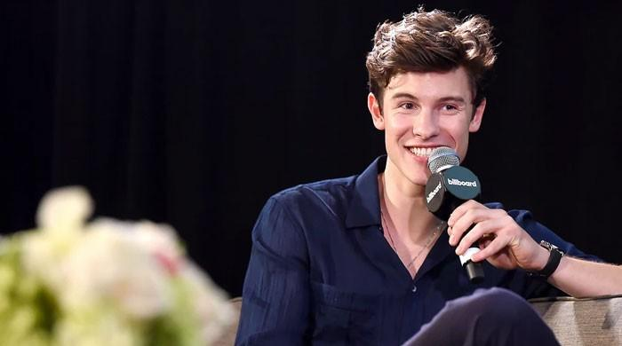 Shawn Mendes found a 'real kind of love' from his film 'In Wonder'