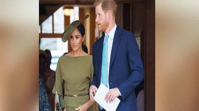 Meghan Markle's secret diary raised eyebrows in the Royal Family?