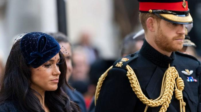 Prince Harry, Meghan Markle scared to 'blindside' royal family with miscarriage news: report