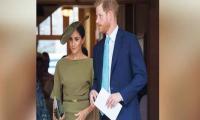Meghan Markle's secret diary raised eyebrows in the Royal Family?