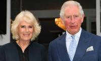 Prince Charles and Camilla subjected to vile abuse online after royal engagement