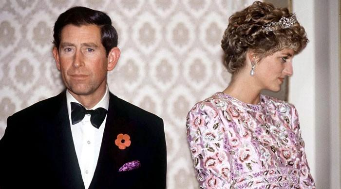 Prince Charles fumed when Princess Diana fainted: 'She could have done it quietly'