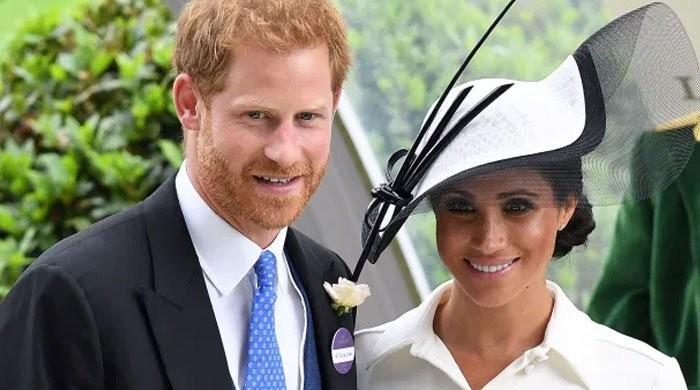 Meghan Markle, Prince Harry blocked by Netflix over anti-royal shows