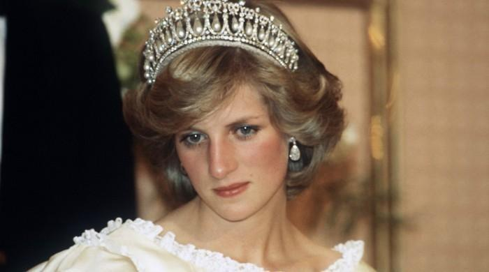 'Princess Diana would've done everything in her power to damage monarchy'