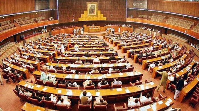 Senate, National Assembly sessions to be convened on January 22: Babar Awan
