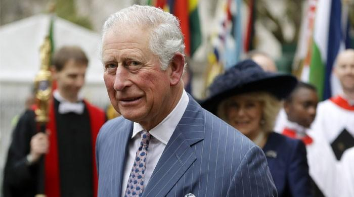 Prince Charles dubbed a 'risk to the monarchy': 'He's more suited to the 18th century