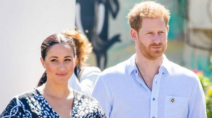 Critics call on Prince Harry, Meghan Markle's pre-Megxit savings to be dispersed: report
