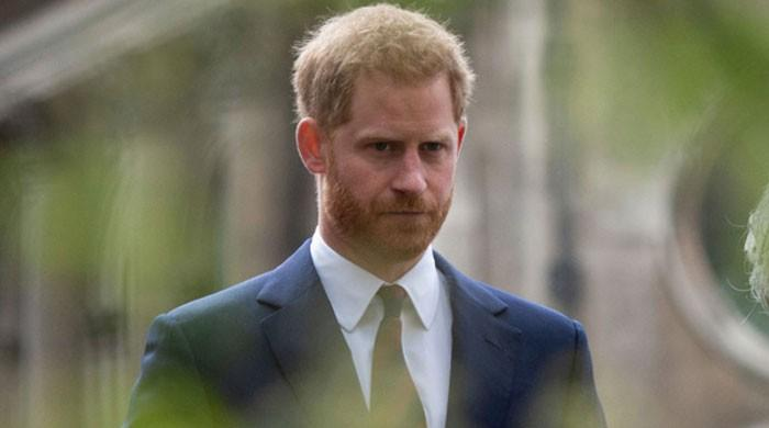 Prince Harry sheds light on everything Meghan Markle's been up to in 2020