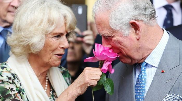 Camilla had no intentions of marrying Prince Charles: 'She saw life as a bit of fun'
